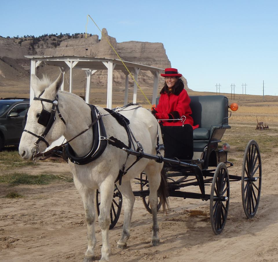 horse-n-carraige